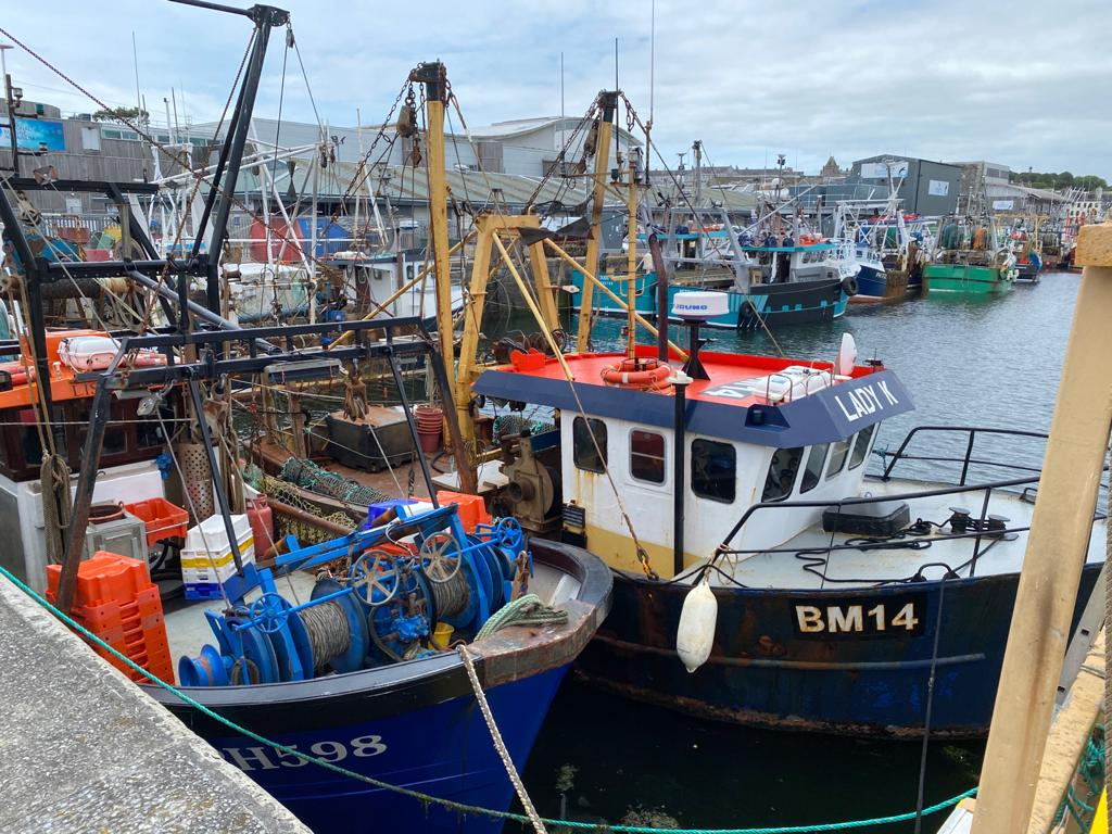 A photo of fishing vessels in the harbour