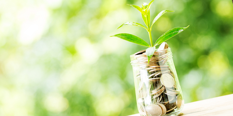 Finance/investment