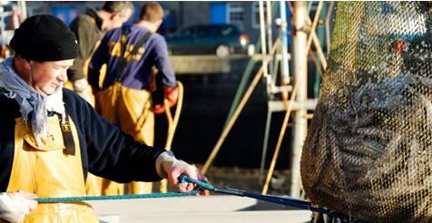 Fishing vessel hygiene