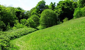 Bircham Valley