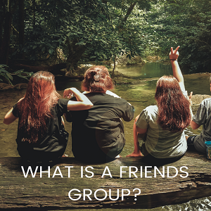 What is a Friends Group