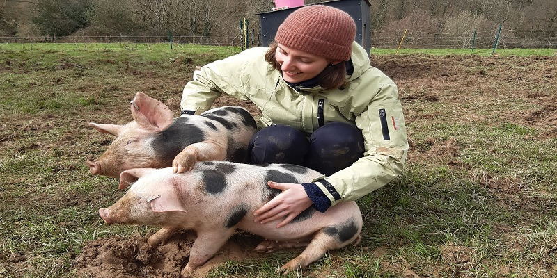 Health and Wellbeing at Poole Farm