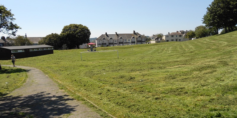 Photograph of a grass field with houses and a tree in the background