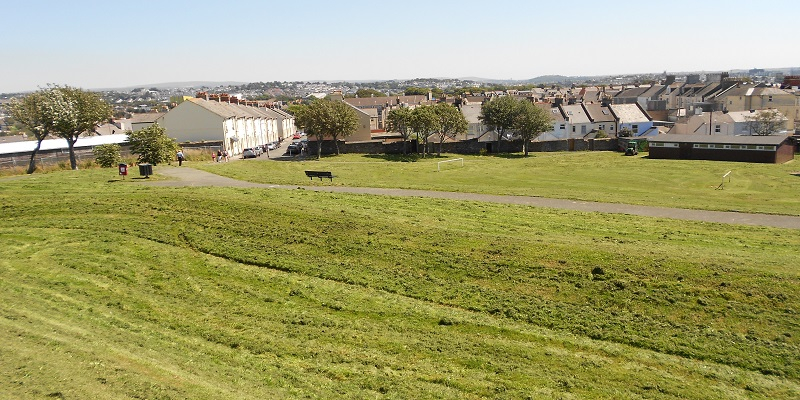 Photograph of a park with a sloping grass field with a hedge and houses in the background