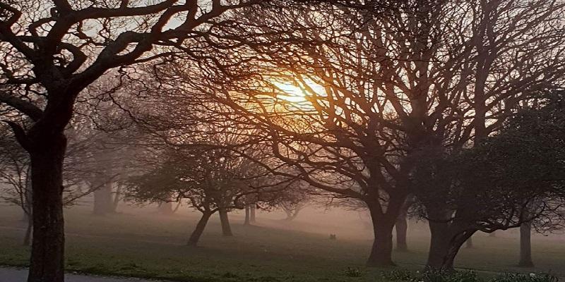 Devonport Park - Credit Iain Salde