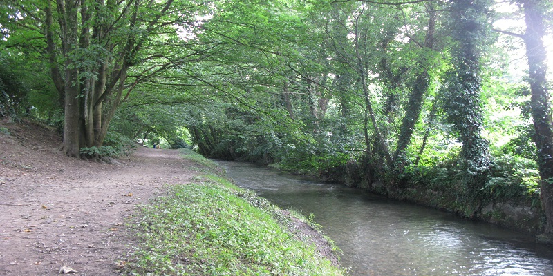 image of river with trees on one side and a path on the other side
