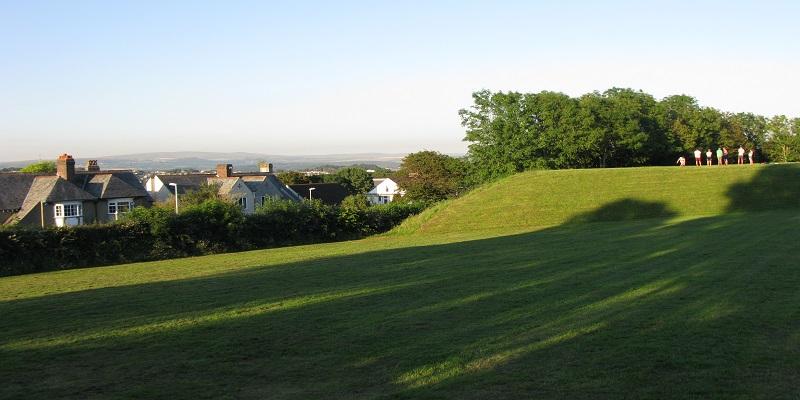 far view of hartley park