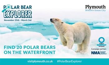 Polar Bear Explorer