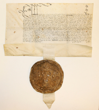 image of the licence to pirate document
